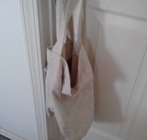 bags and bacteria
