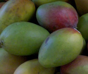 mangos and breast cancer