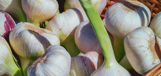 leukemia and garlic