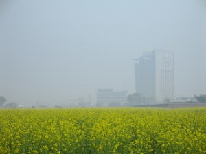 fertilizers contribute to greenhouse gases
