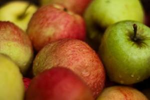 apple cider vinegar reduces varicose veins