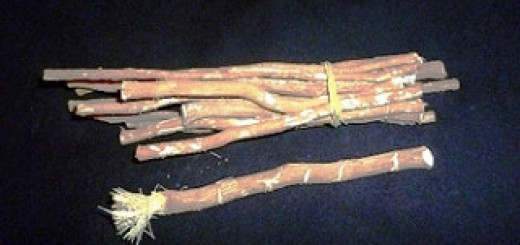 miswak antibacterial twigs