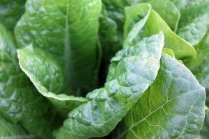 Spinach and other leafy greens high in nitrates