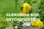 cleansing and detoxification articles