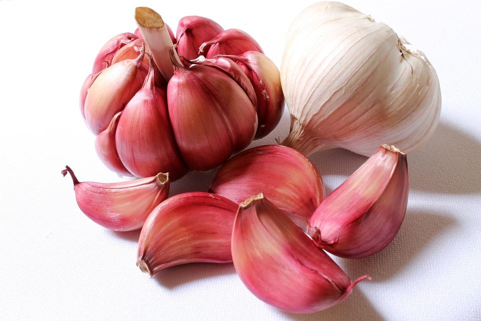 garlic can treat parkinson's